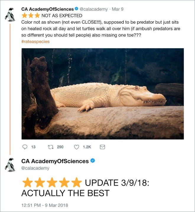 Text - CA AcademyOfSciences @calacademy Mar 9 NOT AS EXPECTED Color not as shown (not even CLOSE!!), supposed to be predator but just sits on heated rock all day and let turtles walk all over him (if ambush predators are so different you should tell people) also missing one toe??? #rateaspecies 290 13 1.2K CA AcademyOfSciences @calacademy UPDATE 3/9/18: ACTUALLY THE BEST 12:51 PM -9 Mar 2018