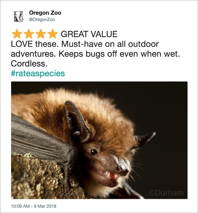 Wildlife - Oregon Zoo @OregonZoo GREAT VALUE LOVE these. Must-have on all outdoor adventures. Keeps bugs off even when wet. Cordless. #rateaspecies ODurham 10:09 AM-9 Mar 2018