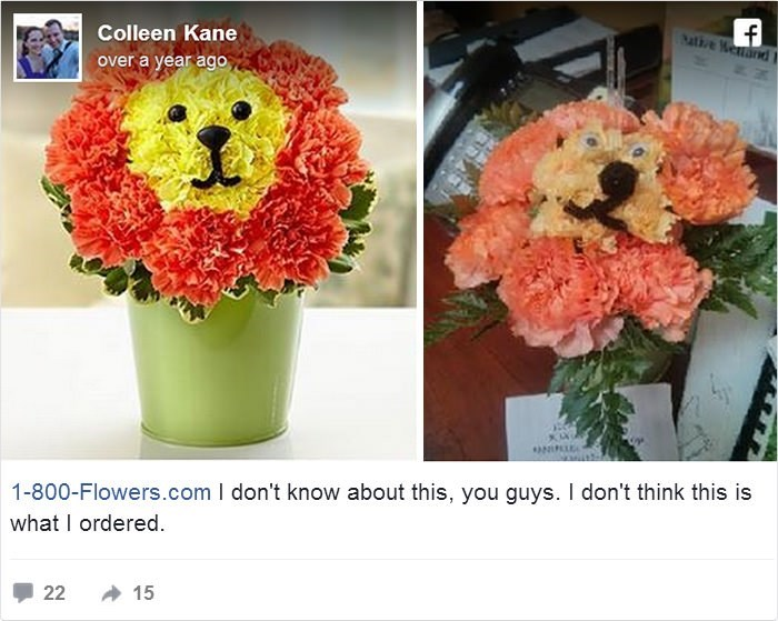 Flower - f sative enand Colleen Kane over a year ago ONIPLEA 1-800-Flowers.com I don't know about this, you guys. I don't think this is what I ordered. 15 22