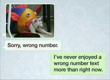 Text - Sorry, wrong number I've never enjoyed a wrong number text more than right now.