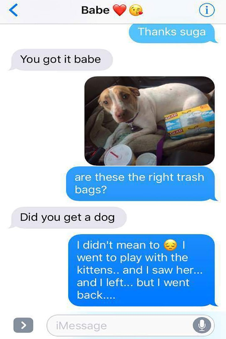 Product - Babe i Thanks suga You got it babe GAD GIAD are these the right trash bags? Did you get a dog I didn't mean to went to play with the kittens.. and I saw her... and I left... but I went back.... > iMessage