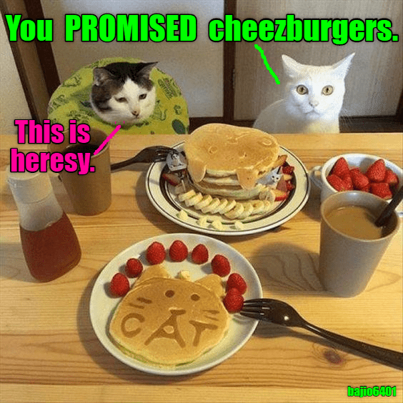 Food - You PROMISED cheezburgers. This is heresy AT bajto6401