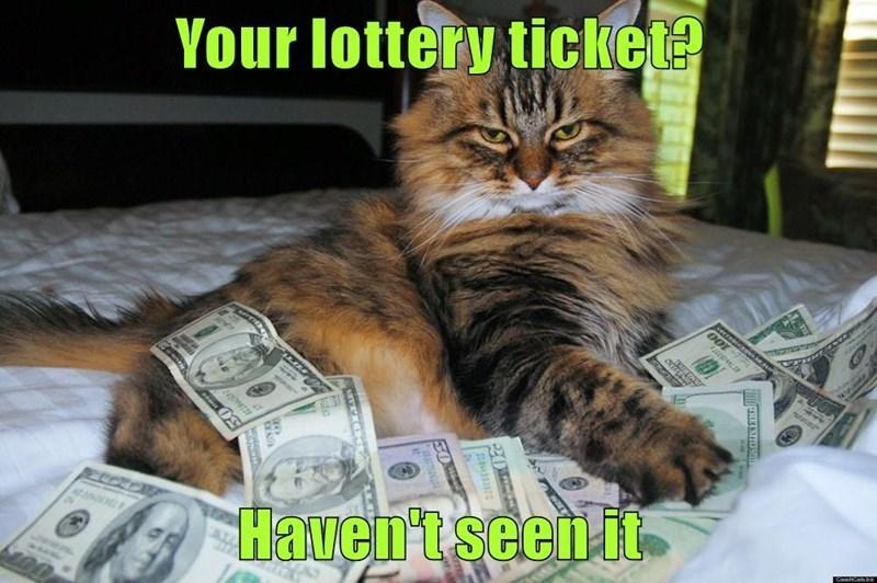 Cat - Your lottery ticket? Haven'tseenit uTEEOer