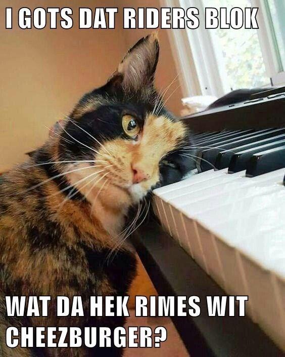 Cat - I GOTS DAT RIDERS BLOK WAT DA HEK RIMES WIT CHEEZBURGER?