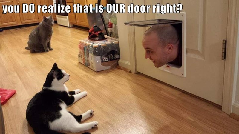 You DO realize that is OUR door right?