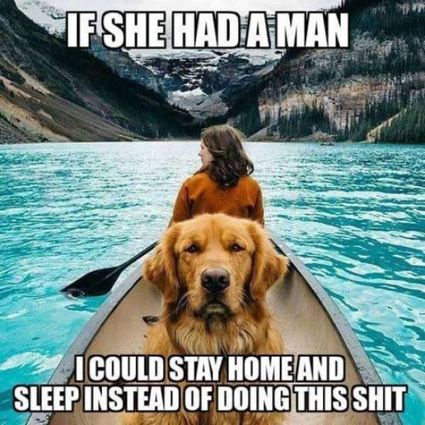 sunday memes - dog meme about wishing his owner had a man so he wouldn't need to unnecessary activities
