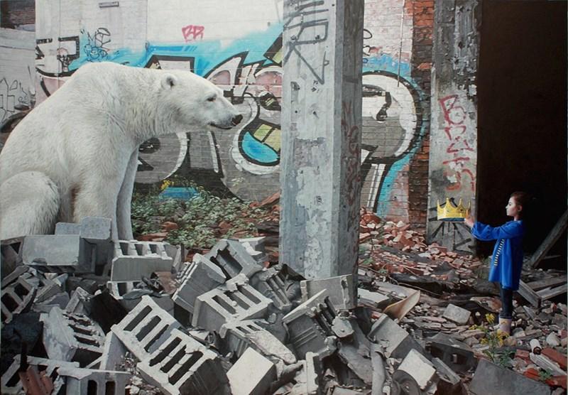 Bear - AR