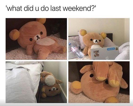 Stuffed toy - 'what did u do last weekend? FREE