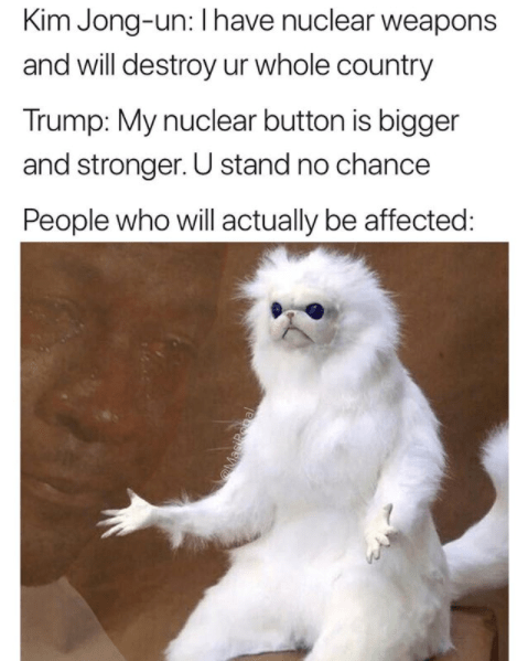 Photo caption - Kim Jong-un: I have nuclear weapons and will destroy ur whole country Trump: My nuclear button is bigger and stronger. U stand no chance People who will actually be affected: