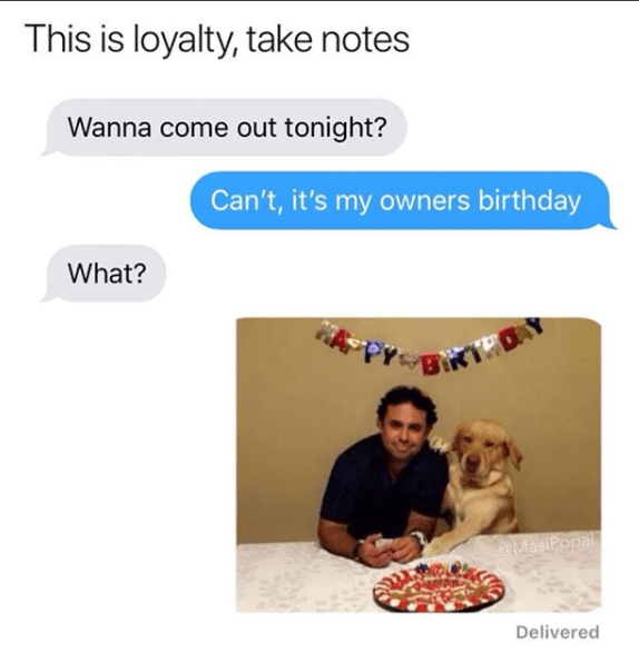 Text - This is loyalty, take notes Wanna come out tonight? Can't, it's my owners birthday What? DAY MasiPopal Delivered