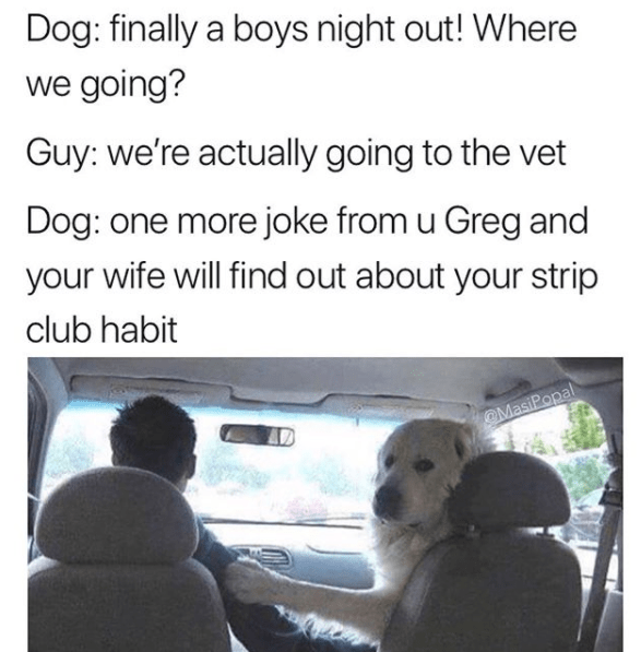 Text - Dog: finally a boys night out! Where we going? Guy: we're actually going to the vet Dog: one more joke from u Greg and your wife will find out about your strip club habit MasiPopal AD