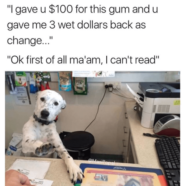 """Dog breed - """"I gave u $100 for this gum and u gave me 3 wet dollars back as change..."""" """"Ok first of all ma'am, I can't read"""" d OMasiPopal"""