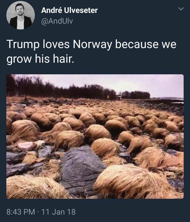 Funny meme about Trump's hair.