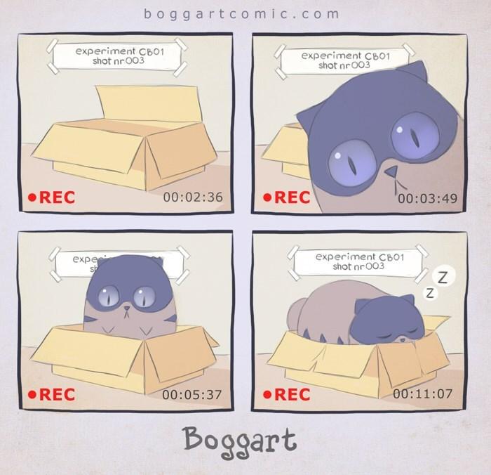Text - boggartcomic.com experiment CB01 shot nrO03 experiment CB01 shot nrO03 REC REC 00:02:36 00:03:49 experiment CB01 shot nrO03 expe 00:11:07 REC 00:05:37 REC Boggart