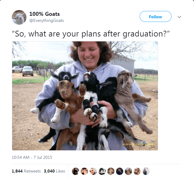 """Canidae - 100% Goats Follow @EverythingGoats """"So, what are your plans after graduation?"""" 10:54 AM - 7 Jul 2015 1,844 Retweets 3,040 Likes"""