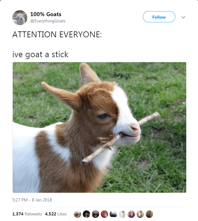 Goats - 100% Goats Follow @EverythingGoats ATTENTION EVERYONE: ive goat a stick 5:27 PM -8 Jan 2018 1,374 Retweets 4,522 Likes
