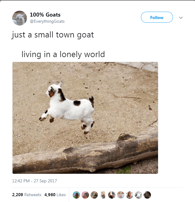 Text - 100% Goats Follow @EverythingGoats just a small town goat living in a lonely world 12:42 PM - 27 Sep 2017 2,209 Retweets 4,960 Likes
