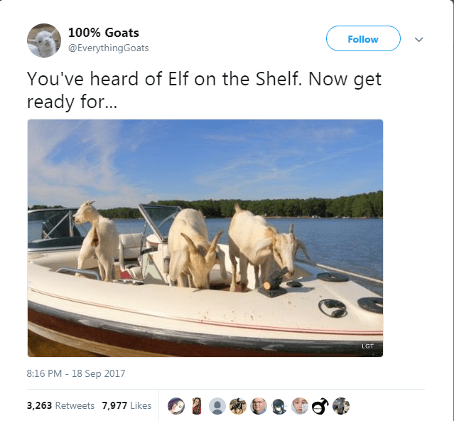 Mode of transport - 100% Goats Follow @EverythingGoats You've heard of Elf on the Shelf. Now get ready fo... LGT 8:16 PM - 18 Sep 2017 3,263 Retweets 7,977 Likes