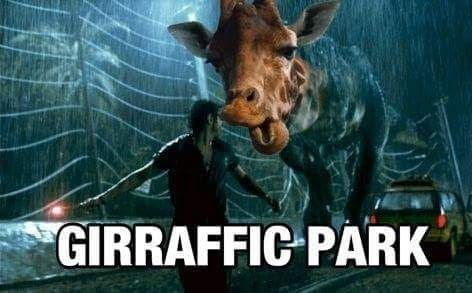 Movie - GIRRAFFIC PARK