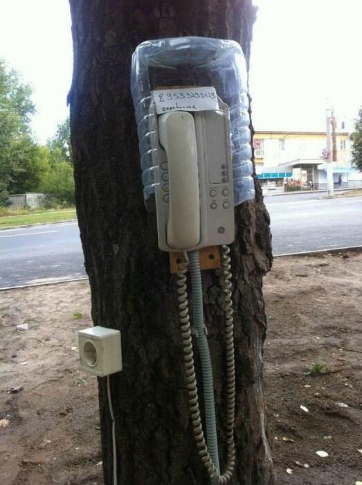 Tree - 295351332