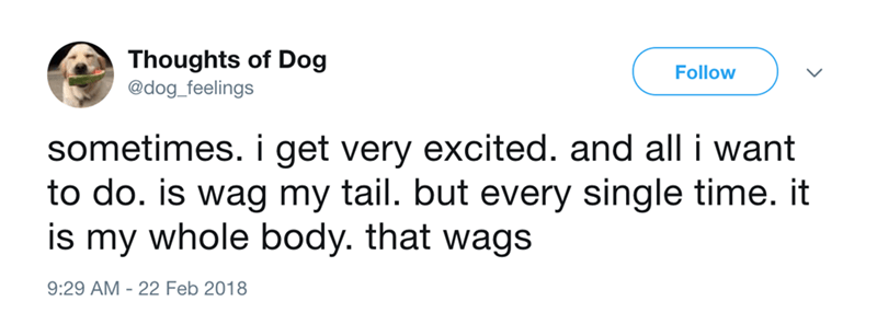 dog - Text - Thoughts of Dog @dog_feelings Follow sometimes. i get very excited. and all i want to do. is wag my tail. but every single time. it is my whole body. that wags 9:29 AM - 22 Feb 2018