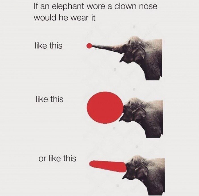 Elephant - If an elephant wore a clown nose would he wear it like this like this or like this