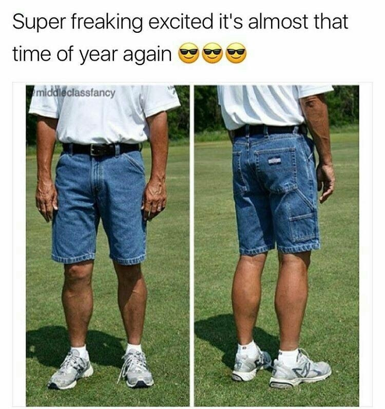 Funny meme about summer.