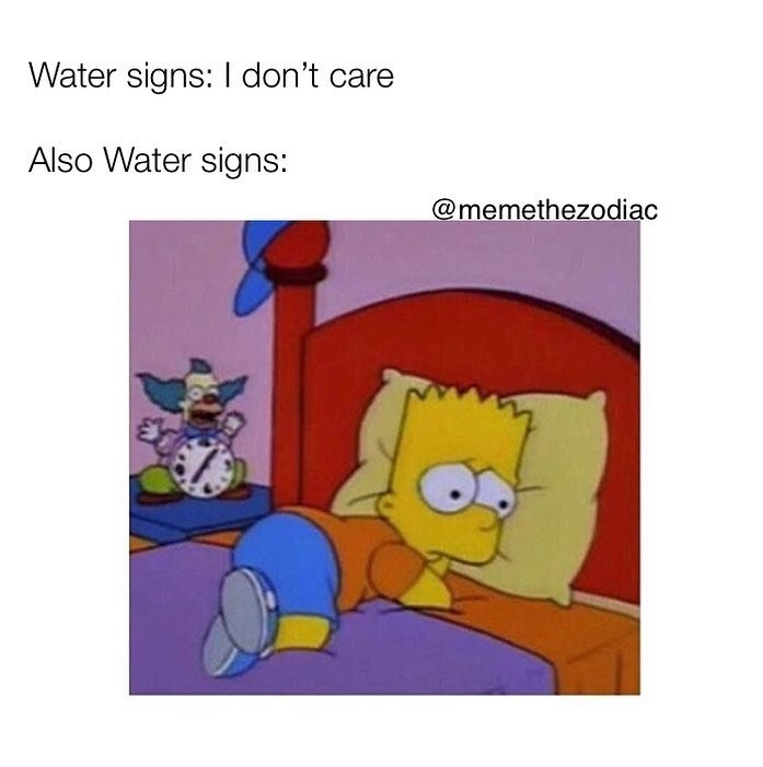 meme - Cartoon - Water signs: I don't care Also Water signs: @memethezodiac