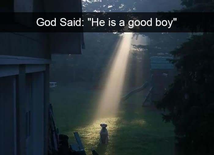 "Atmospheric phenomenon - God Said: ""He is a good boy"""