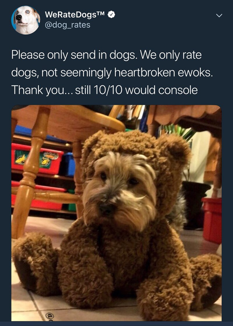 Dog - WeRateDogs TM @dog_rates Please only send in dogs. We only rate dogs, not seemingly heartbroken ewoks. Thank you... still 10/10 would console