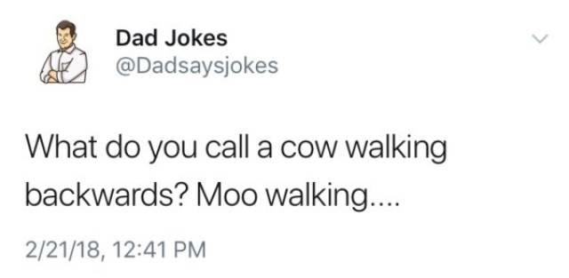Text - Dad Jokes @Dadsaysjokes What do you call a cow walking backwards? Moo walkin... 2/21/18, 12:41 PM