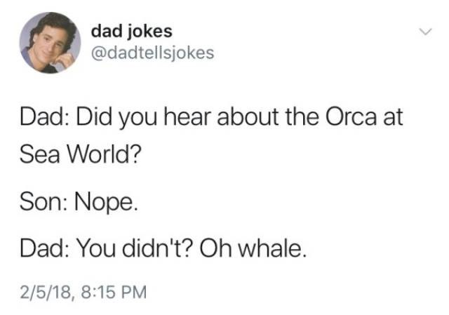 Text - dad jokes @dadtellsjokes Dad: Did you hear about the Orca at Sea World? Son: Nope. Dad: You didn't? Oh whale. 2/5/18, 8:15 PM