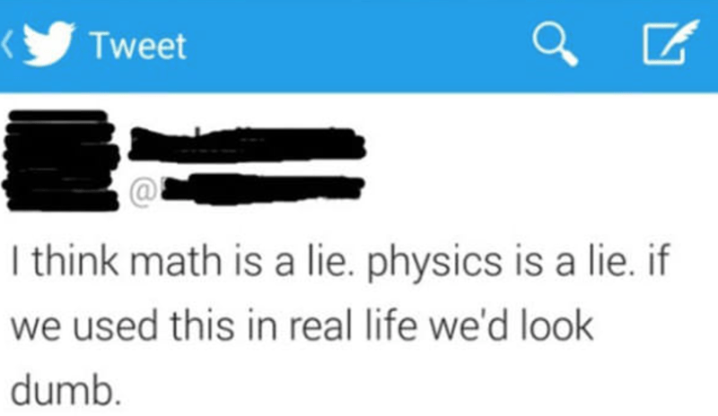 Text - Tweet I think math is a lie. physics is a lie. if we used this in real life we'd look dumb.