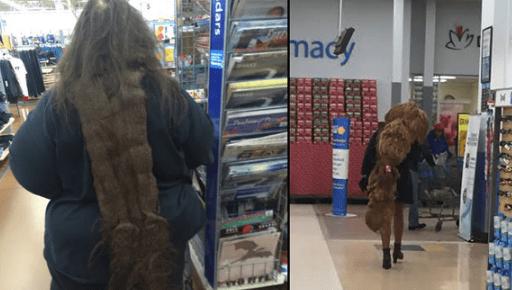 Supermarket - mady dars