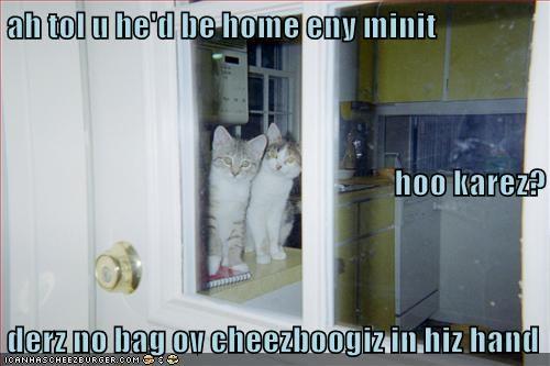 Cheezburger Image 9142507264