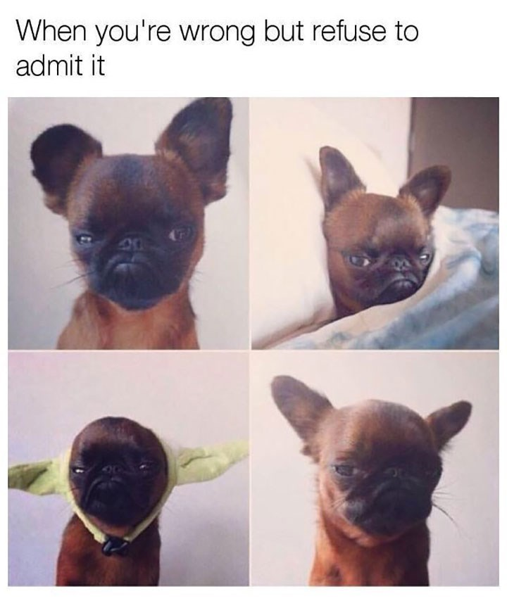dog meme about not wanting to admit you're wrong