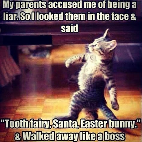 "Cat - My parents accused me of being a liar.Sollooked them in the face & said ""Tooth fairy,Santa, Easter bunny &Walked away like aboss"