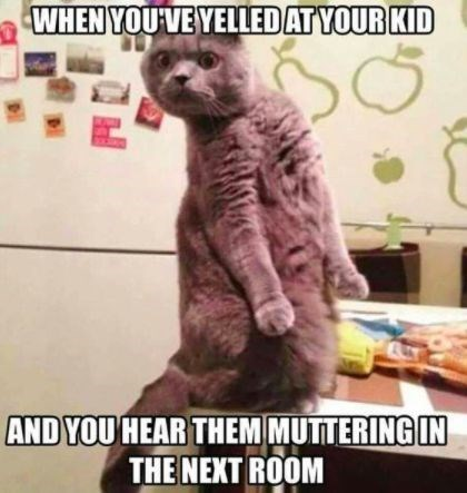 Internet meme - WHEN YOU VEYELLEDATYOUR KID AND YOU HEAR THEM MUTTERING IN THE NEXT ROOM