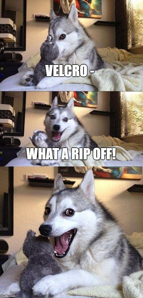 Mammal - VELCRO WHATA RIPOFF! imgfip.com