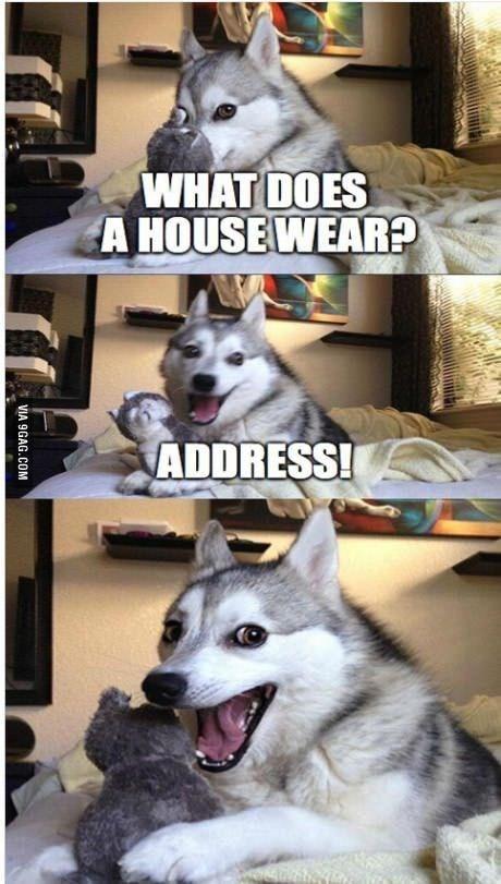Mammal - WHAT DOES A HOUSEWEAR? ADDRESS! VIA 9GAG.COM