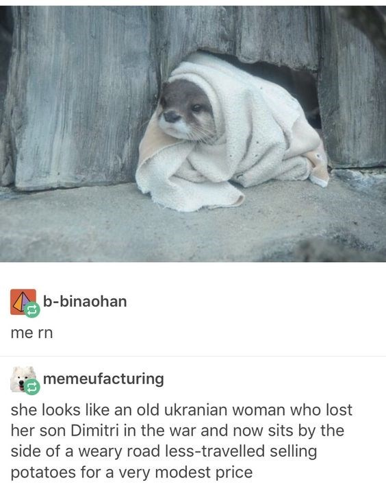 Text - b-binaohan me rn memeufacturing she looks like an old ukranian woman who lost her son Dimitri in the war and now sits by the side of a weary road less-travelled selling potatoes for a very modest price