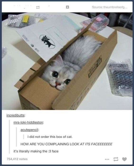 Cat - Source: theumbrellaofg... incredibutts: mrs-loki-hiddleston: acutepencil: I did not order this box of cat. HOW ARE YOU COMPLAINING LOOK AT ITS FACEEEEEEE it's literally making the :3 face 754,412 notes