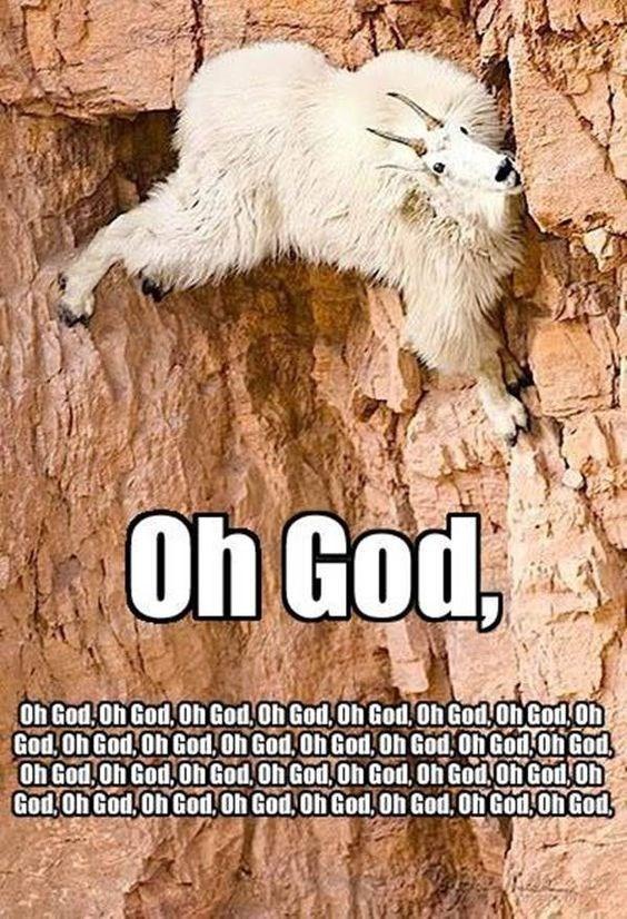 Fur - Oh God, Oh God Oh God,Oh God Oh God,Oh God Oh God Oh God 0h God,Oh God,Oh God,Oh God,Oh God,Oh God Oh God Oh God Oh God,Oh God Oh God Oh God,Oh God, Oh God Oh God,Oh God Oh God,Oh God,Oh God,Oh God 0h God.Oh God,OhGod