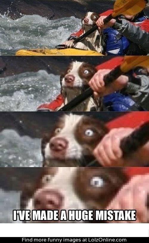 Snout - IVE MADE A HUGE MISTAKE Find more funny images at LolzOnline.com