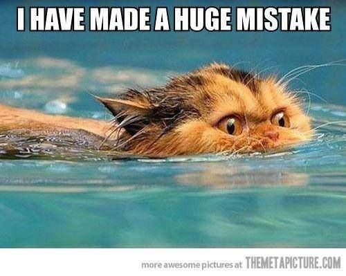 Swimming - IHAVE MADE A HUGE MISTAKE more awesome pictures at THEMETAPICTURE.COM