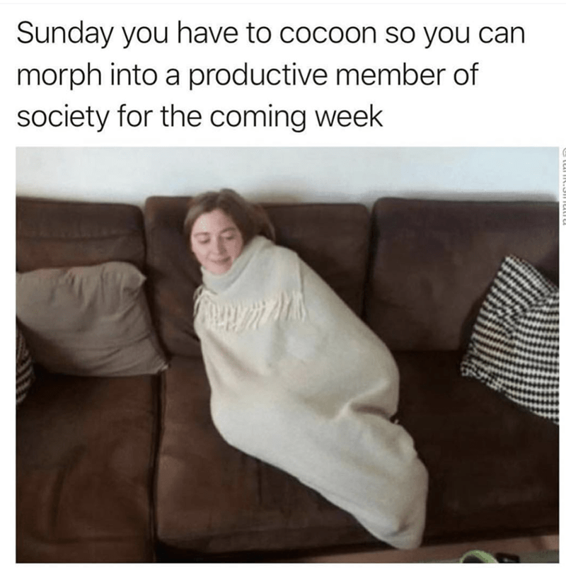 productivity adulting sunday mondays - 9143095296