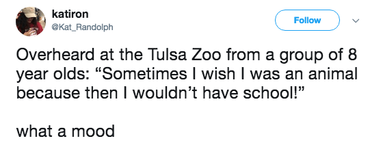 """Text - katiron Follow @Kat_Randolph Overheard at the Tulsa Zoo from a group of 8 year olds: """"Sometimes I wish I was an animal because then I wouldn't have school!"""" what a mood"""
