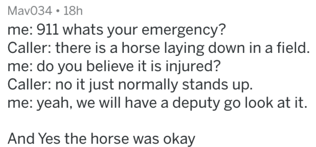 Text - Mav034 18h me: 911 whats your emergency? Caller: there is a horse laying down in a field. me: do you believe it is injured? Caller: no it just normally stands up. me: yeah, we will have a deputy go look at it. And Yes the horse was okay
