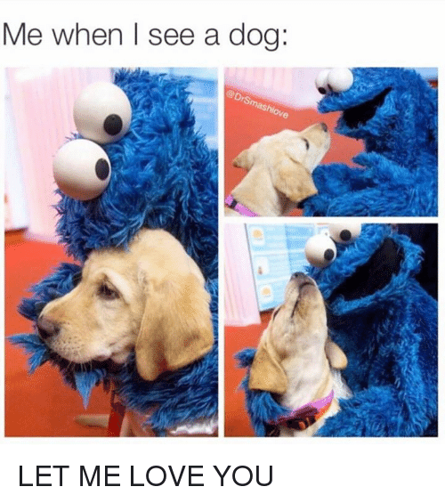 dog meme of cookie monster hugging and playing with a dog
