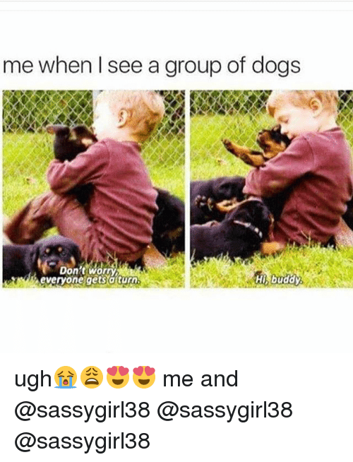 dog meme of a child holding a dog ad playing with puppies